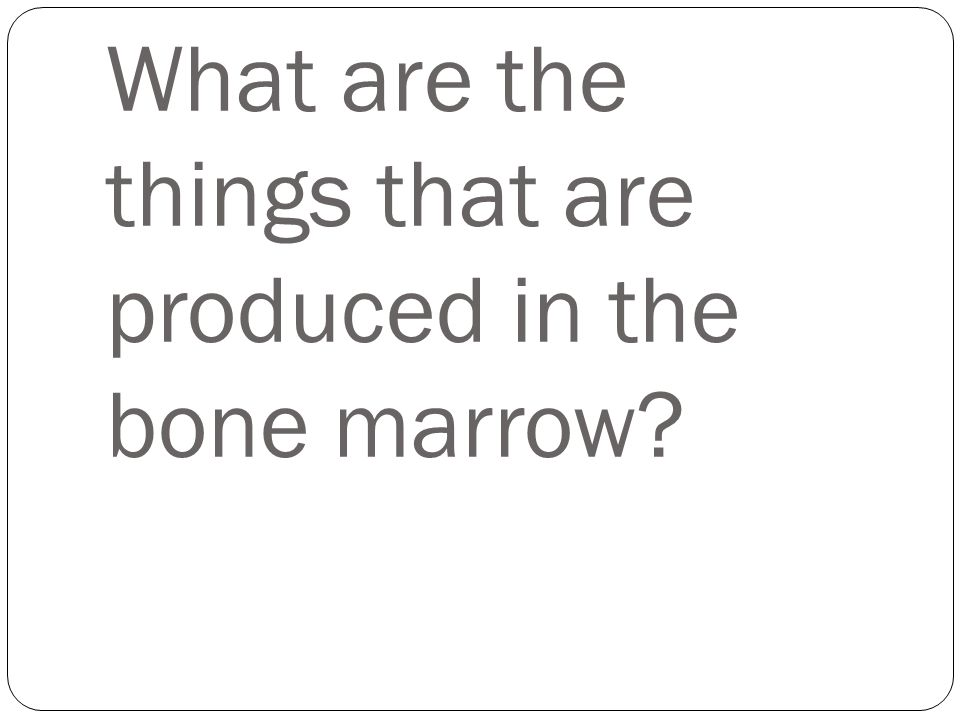 What are the things that are produced in the bone marrow