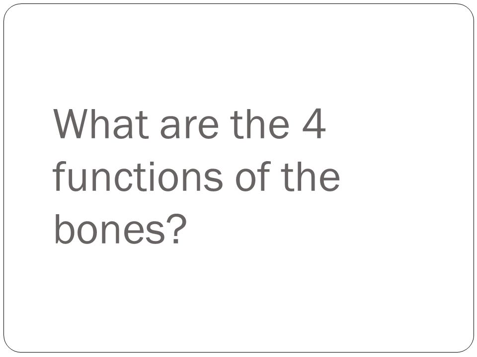 What are the 4 functions of the bones