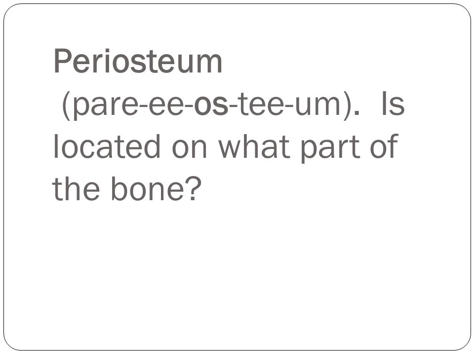 Periosteum (pare-ee-os-tee-um). Is located on what part of the bone