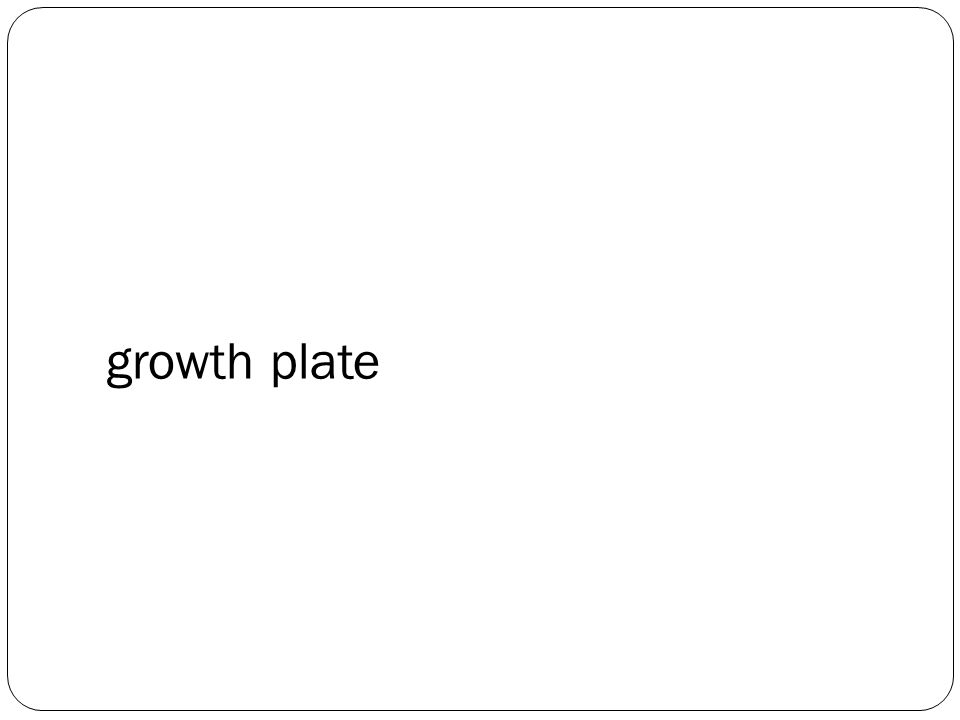 growth plate
