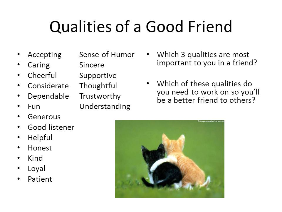 quality of friends essay