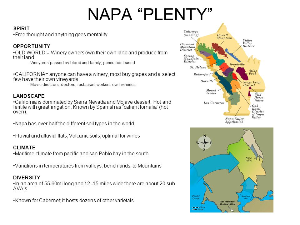 NAPA PLENTY SPIRIT Free thought and anything goes mentality