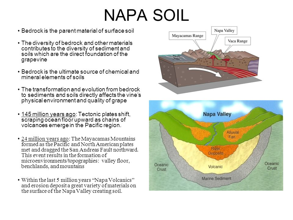 NAPA SOIL Bedrock is the parent material of surface soil