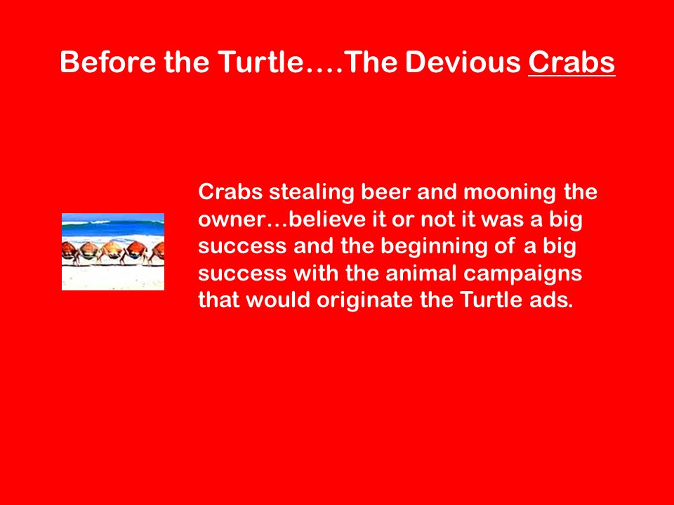 Before the Turtle….The Devious Crabs