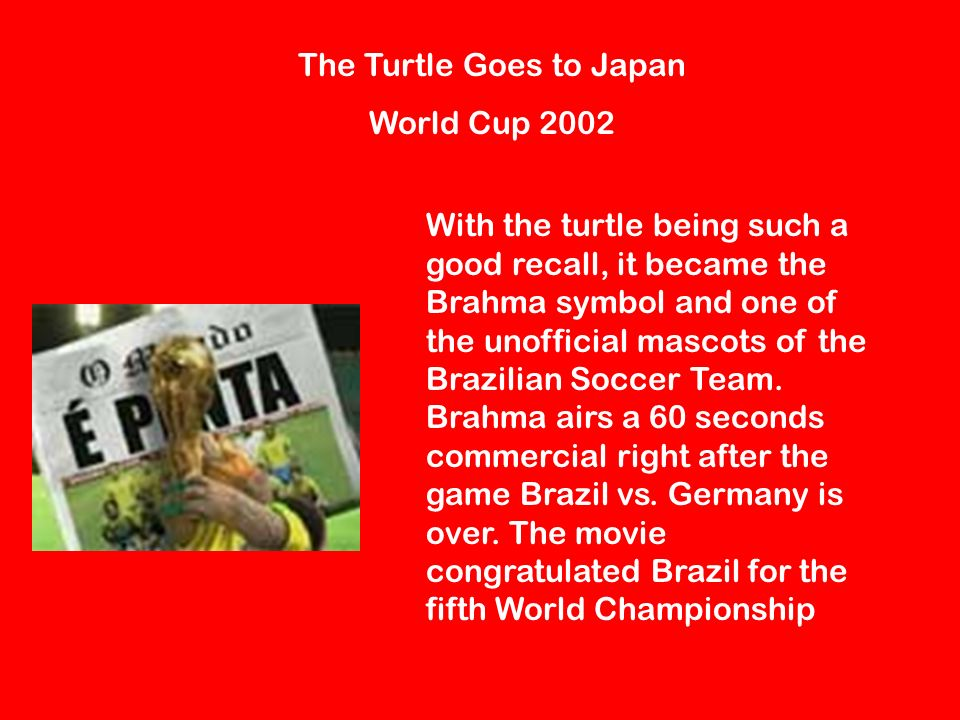 The Turtle Goes to Japan