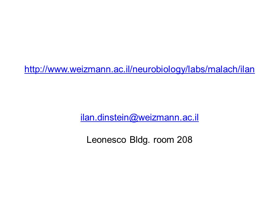 http://www. weizmann. ac. il/neurobiology/labs/malach/ilan ilan