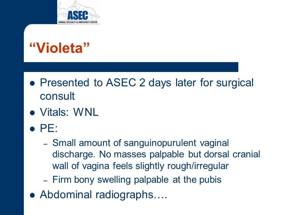 Violeta Presented to ASEC 2 days later for surgical consult
