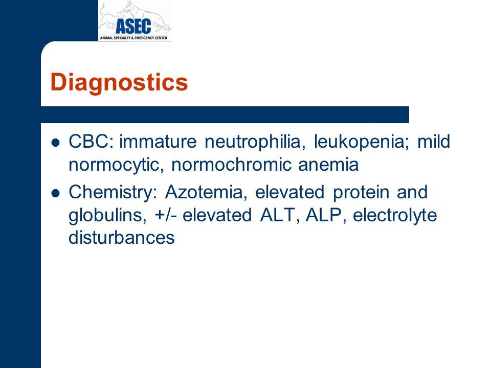 Diagnostics CBC: immature neutrophilia, leukopenia; mild normocytic, normochromic anemia.