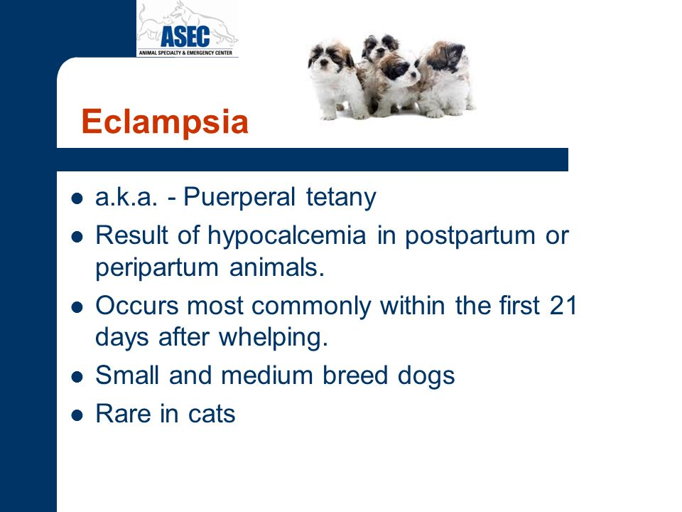 Eclampsia a.k.a. - Puerperal tetany