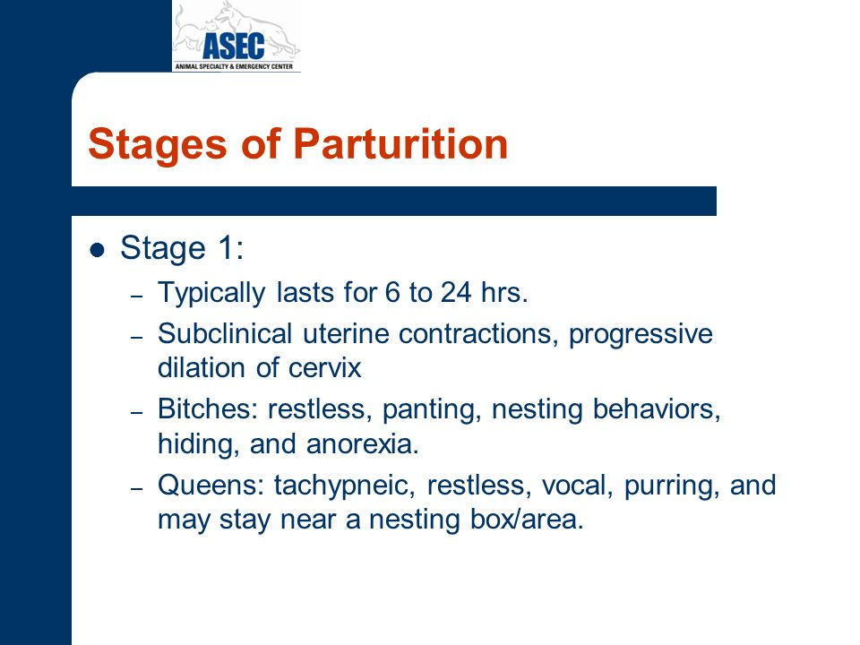 Stages of Parturition Stage 1: Typically lasts for 6 to 24 hrs.