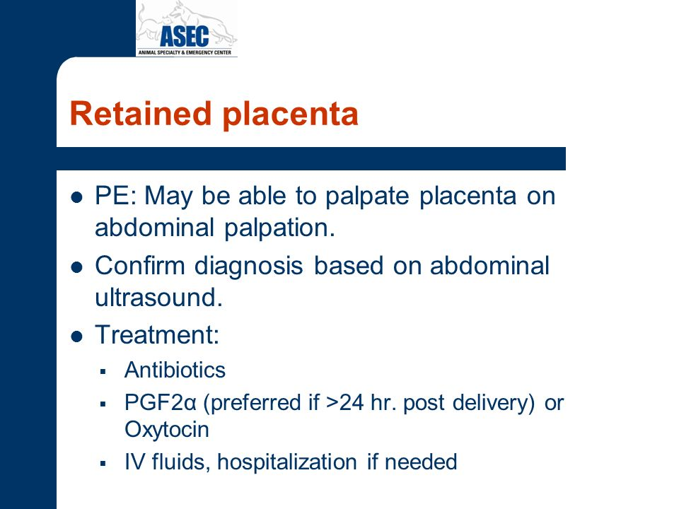 Retained placenta PE: May be able to palpate placenta on abdominal palpation. Confirm diagnosis based on abdominal ultrasound.