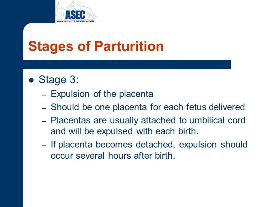 Stages of Parturition Stage 3: Expulsion of the placenta