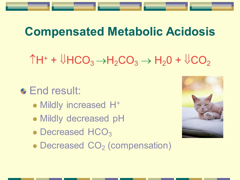 Compensated Metabolic Acidosis
