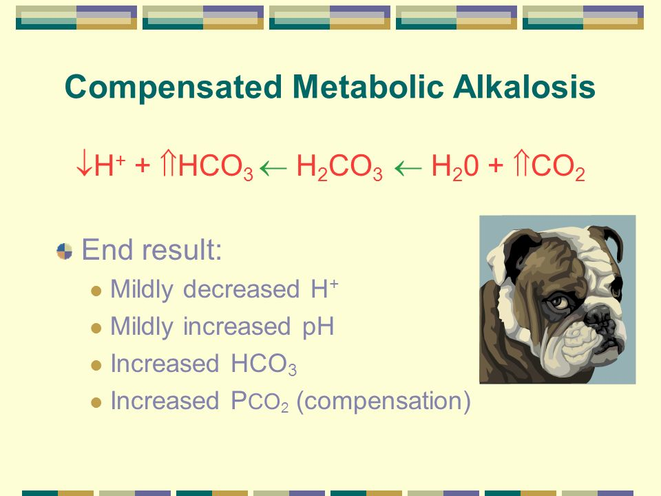 Compensated Metabolic Alkalosis
