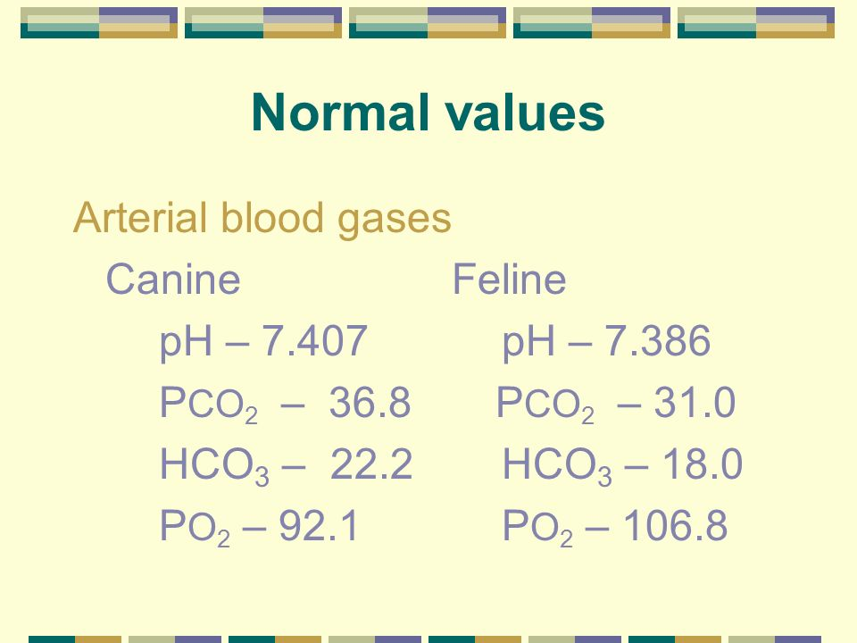 Normal values Arterial blood gases Canine Feline pH – 7.407 pH – 7.386