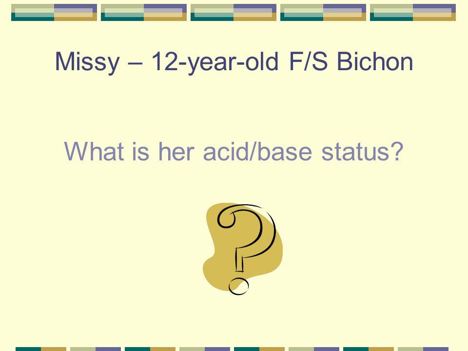 Missy – 12-year-old F/S Bichon