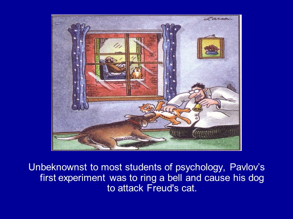 Unbeknownst to most students of psychology, Pavlov's first experiment was to ring a bell and cause his dog to attack Freud s cat.