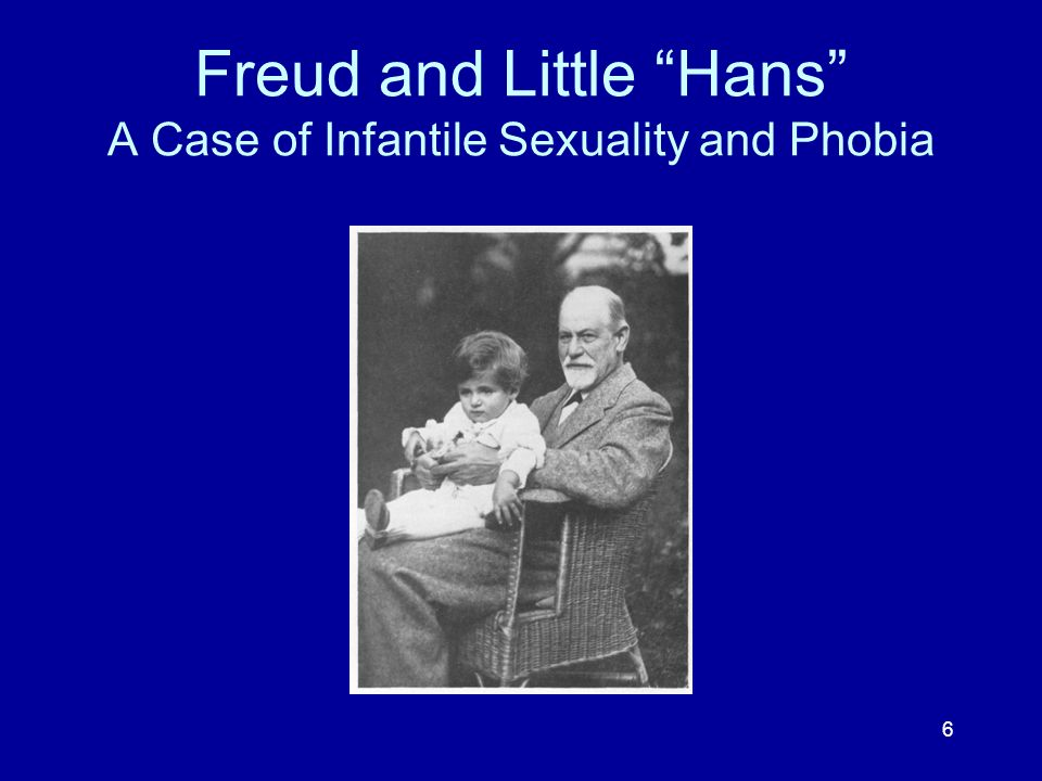 Freud and Little Hans A Case of Infantile Sexuality and Phobia