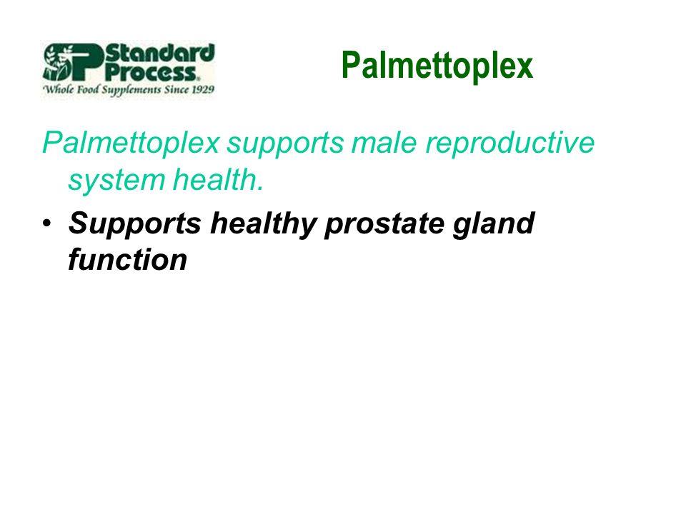 Palmettoplex Palmettoplex supports male reproductive system health.