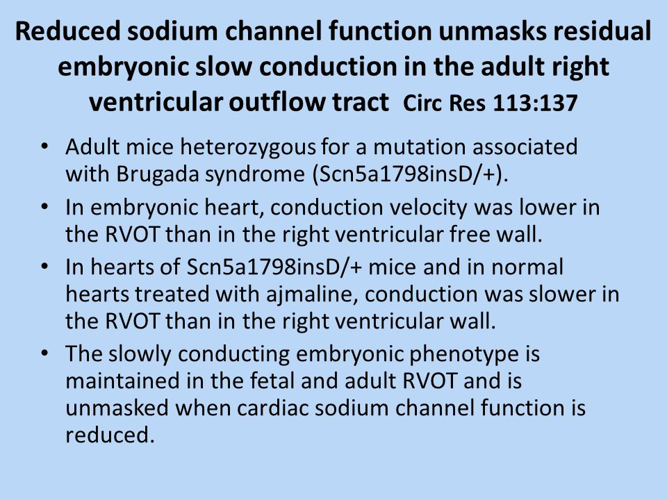 Reduced sodium channel function unmasks residual embryonic slow conduction in the adult right ventricular outflow tract Circ Res 113:137