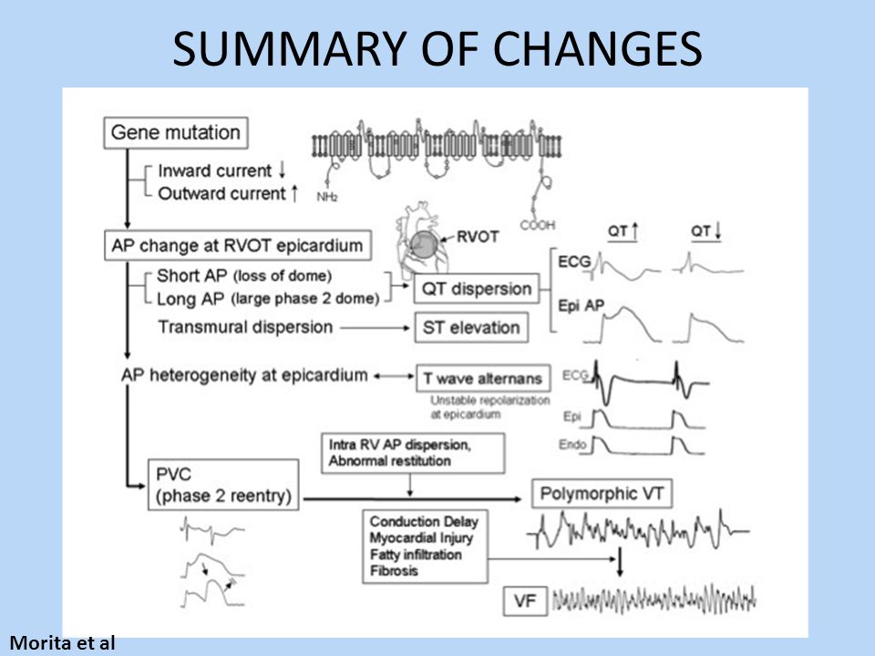 SUMMARY OF CHANGES Morita et al