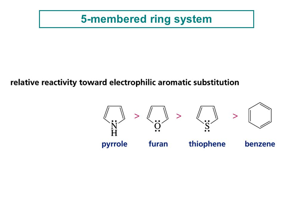 5-membered ring system 29