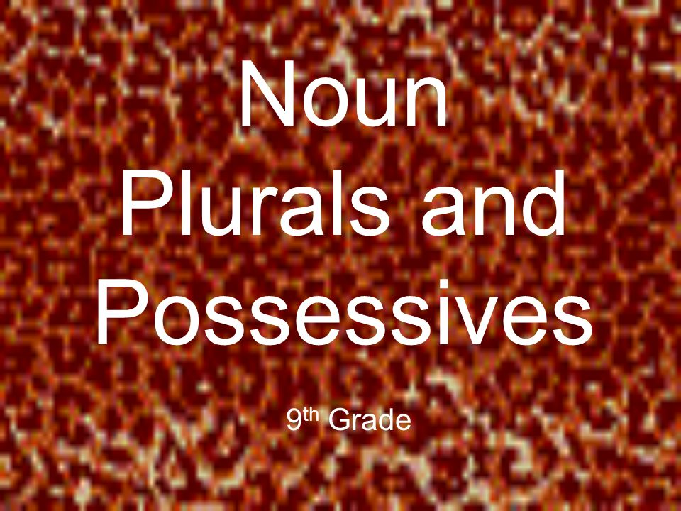Noun Plurals and Possessives