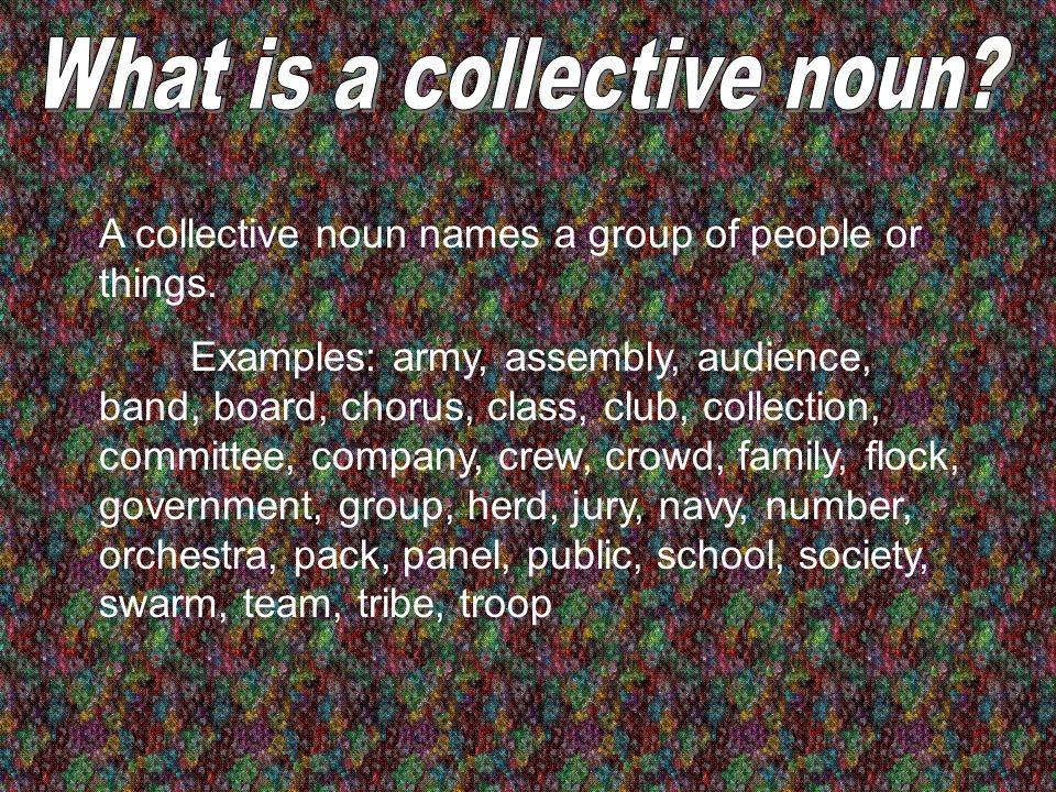 What is a collective noun