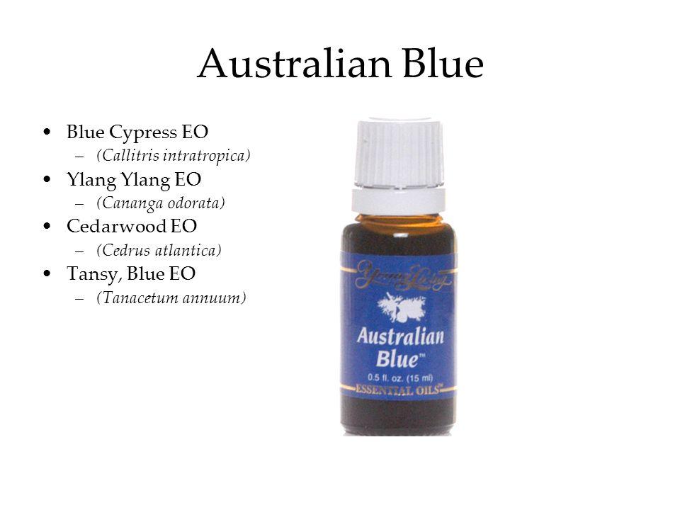 Australian Blue Blue Cypress EO Ylang Ylang EO Cedarwood EO