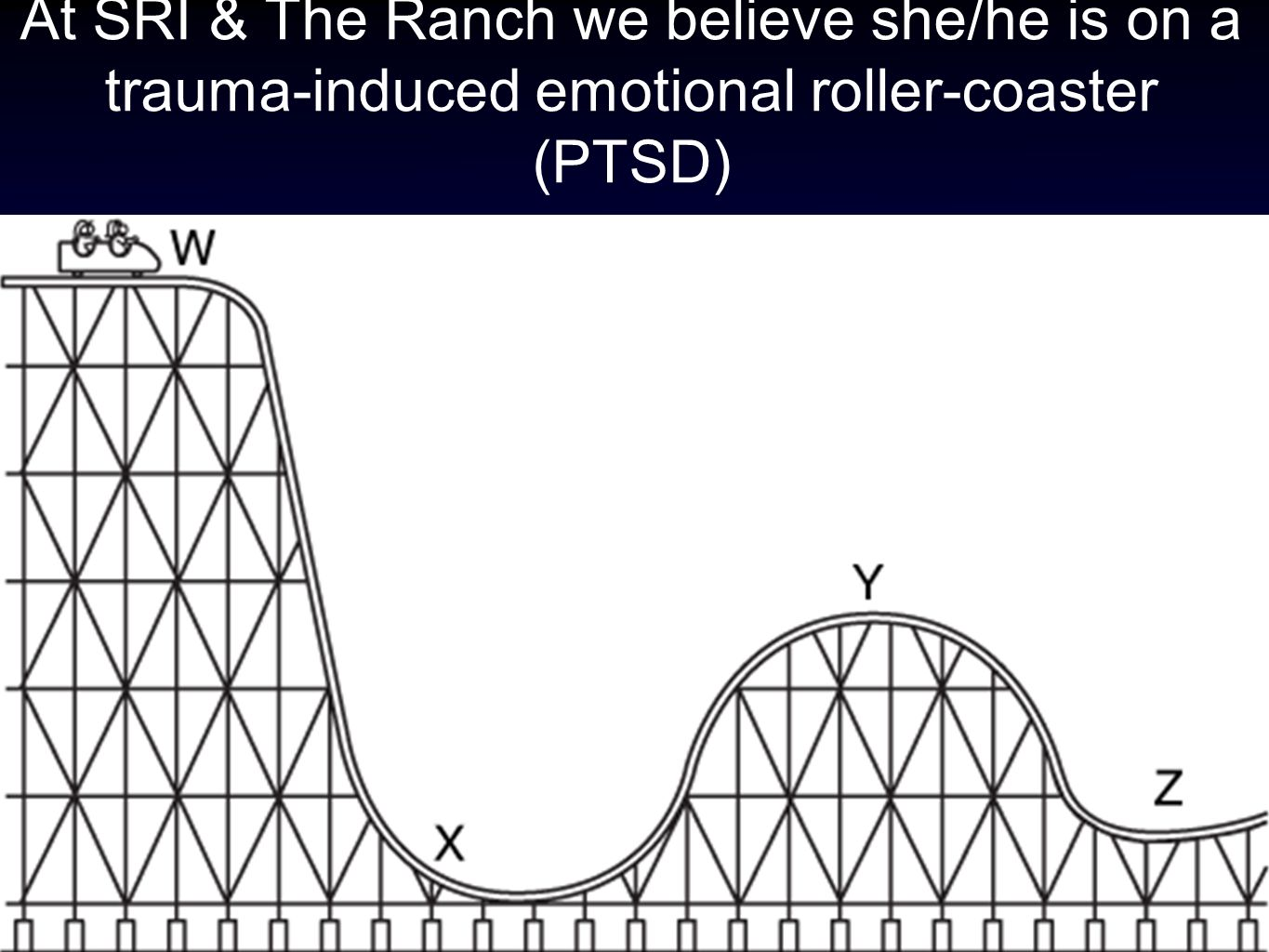 At SRI & The Ranch we believe she/he is on a trauma-induced emotional roller-coaster (PTSD)