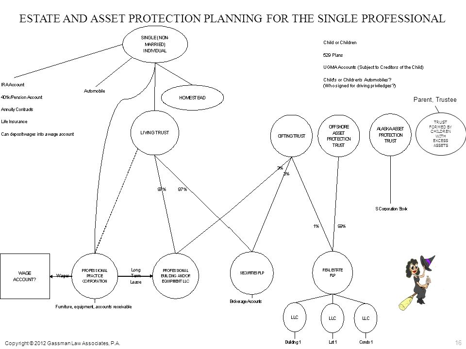 ESTATE AND ASSET PROTECTION PLANNING FOR THE SINGLE PROFESSIONAL