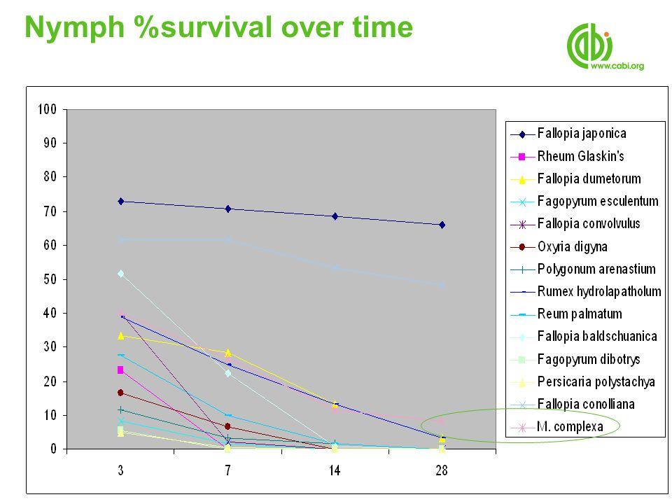 Nymph %survival over time
