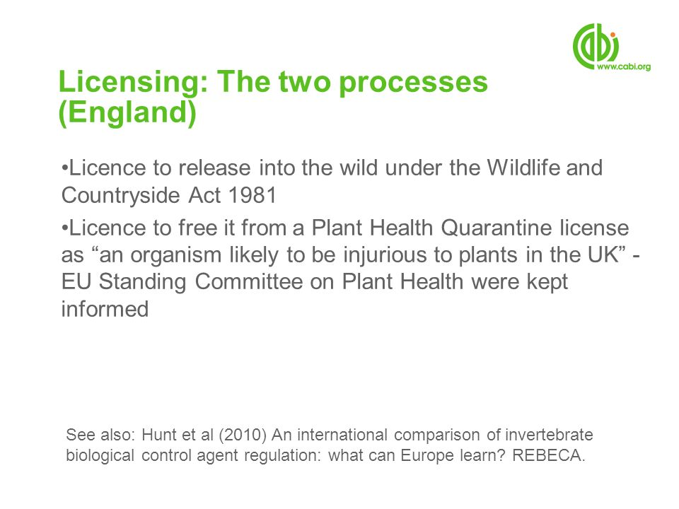 Licensing: The two processes (England)