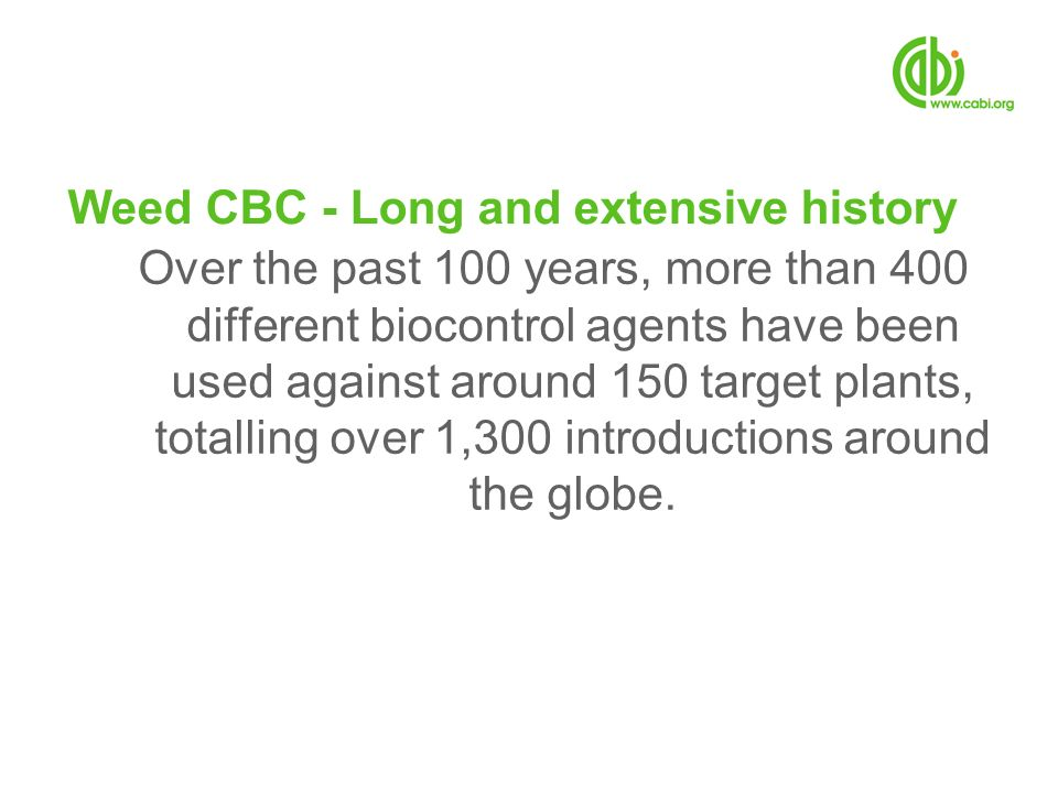 Weed CBC - Long and extensive history