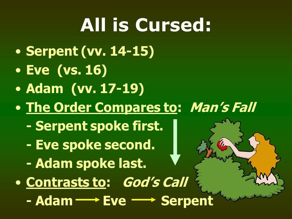 All is Cursed: Serpent (vv. 14-15) Eve (vs. 16) Adam (vv. 17-19)