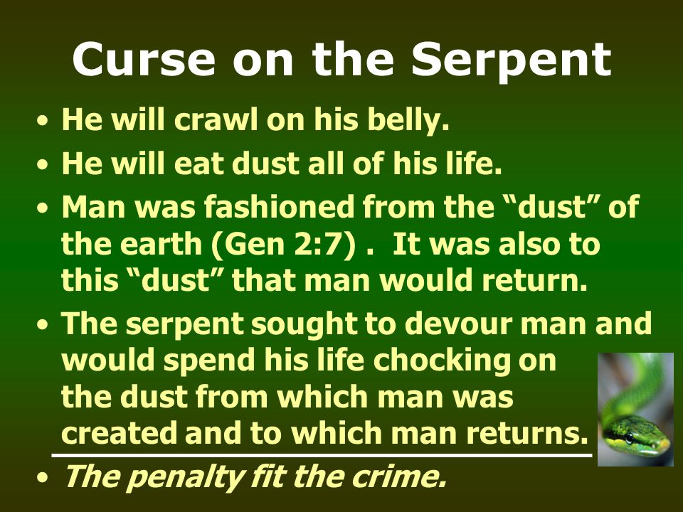 Curse on the Serpent He will crawl on his belly.