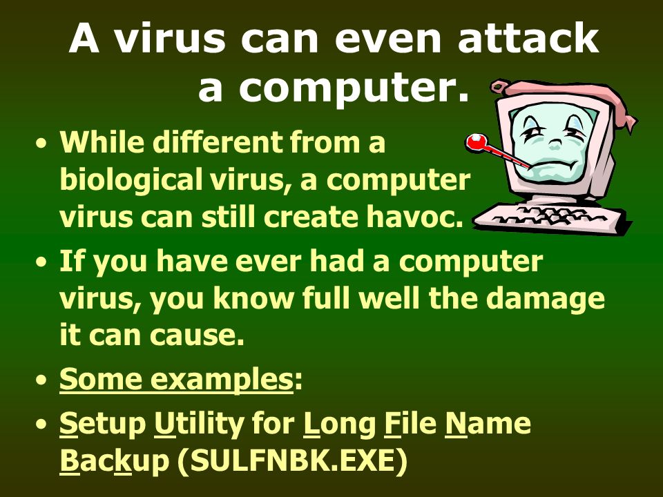 A virus can even attack a computer.