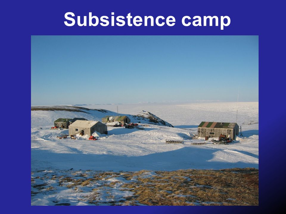 Subsistence camp
