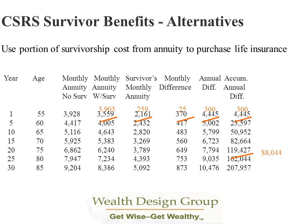 CSRS Survivor Benefits - Alternatives