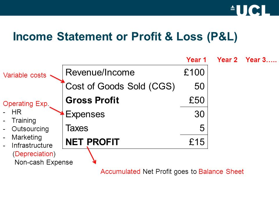Income Statement or Profit & Loss (P&L)