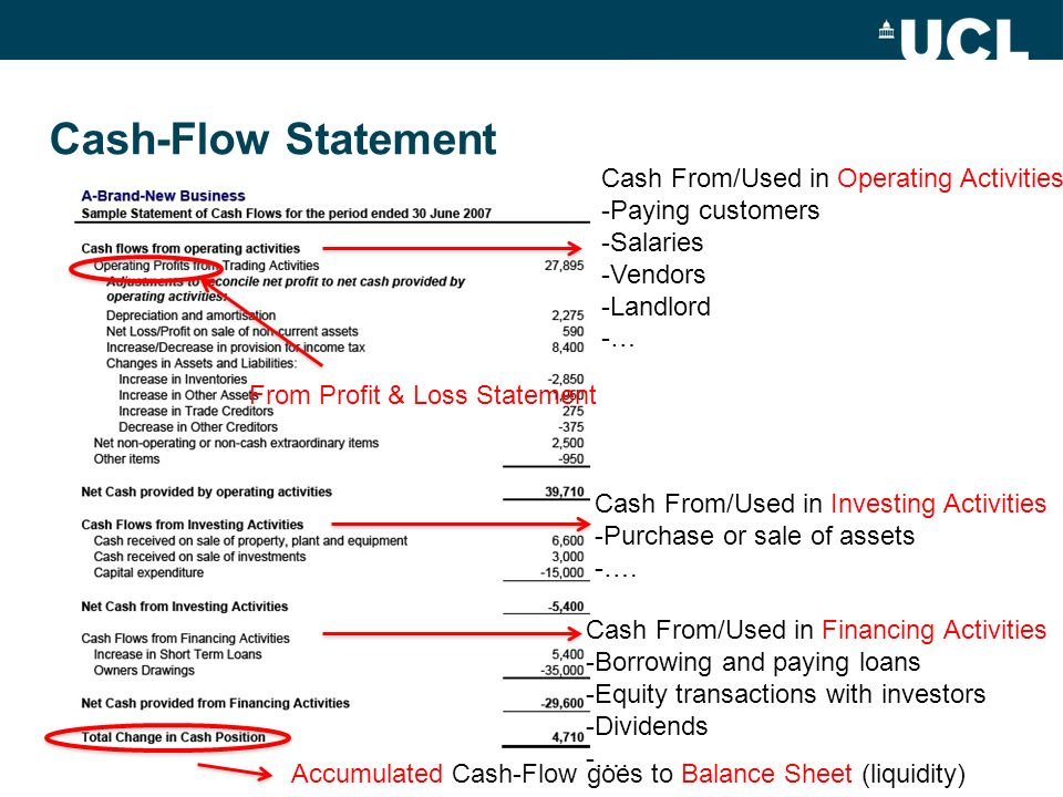 Cash-Flow Statement Cash From/Used in Operating Activities