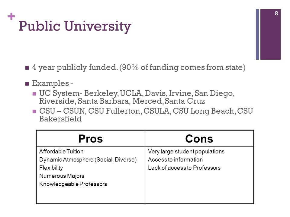Public University Pros Cons