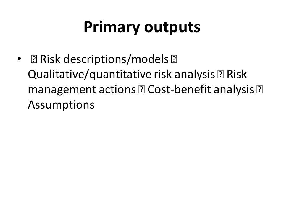Primary outputs  Risk descriptions/models  Qualitative/quantitative risk analysis  Risk management actions  Cost-benefit analysis  Assumptions.