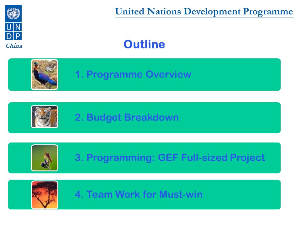 Outline 1. Programme Overview 2. Budget Breakdown