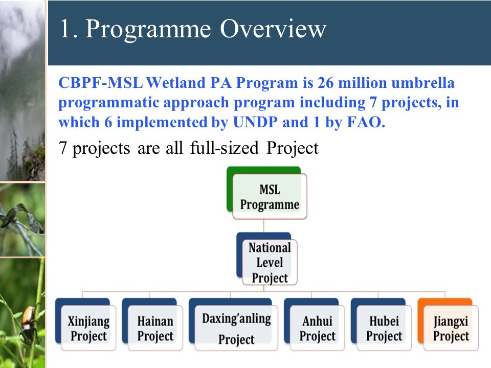 1. Programme Overview 7 projects are all full-sized Project
