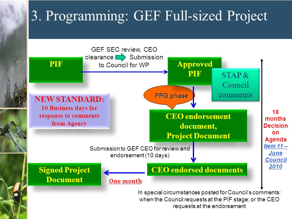 3. Programming: GEF Full-sized Project