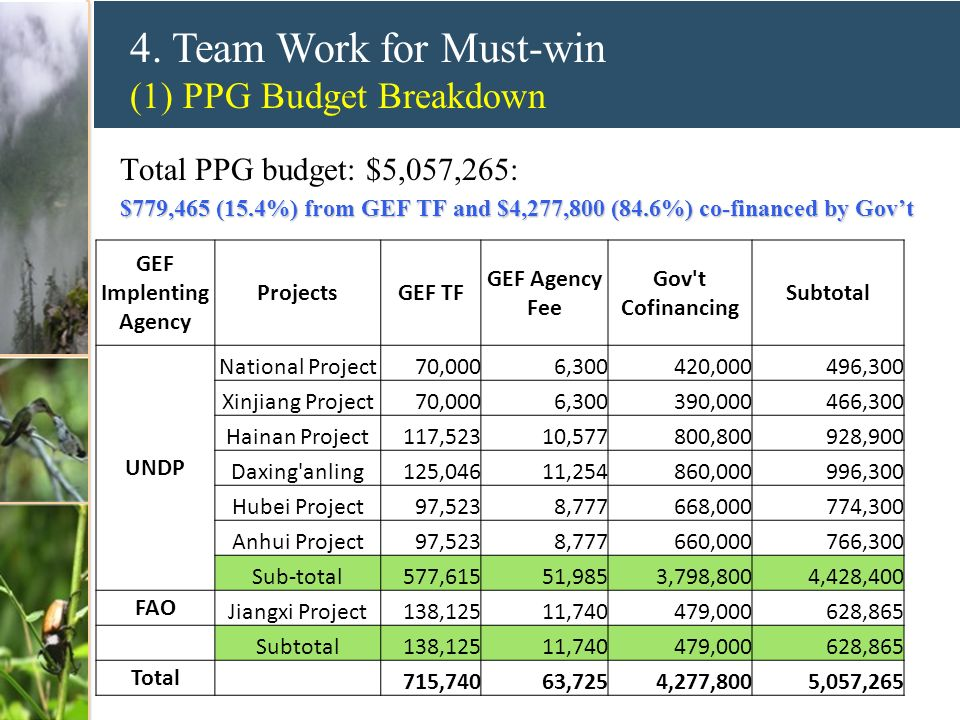4. Team Work for Must-win (1) PPG Budget Breakdown