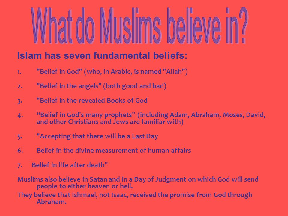 What do Muslims believe in