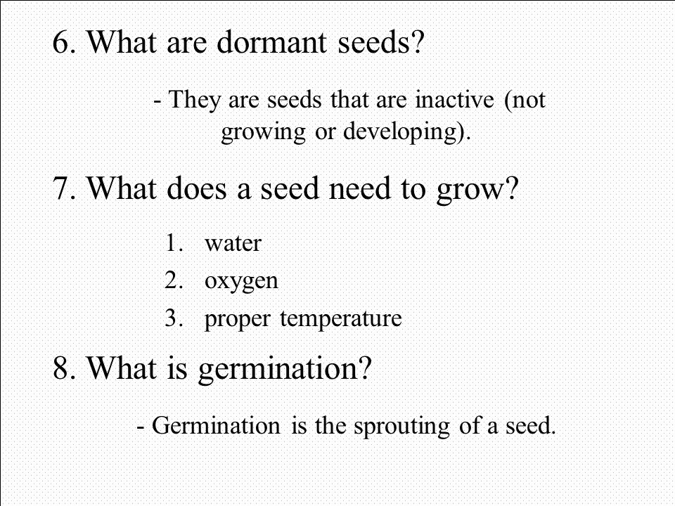 7. What does a seed need to grow
