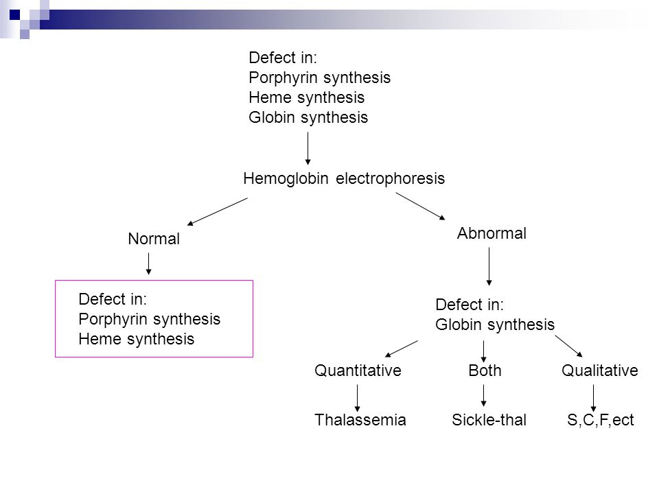 Defect in: Porphyrin synthesis. Heme synthesis. Globin synthesis. Hemoglobin electrophoresis. Abnormal.